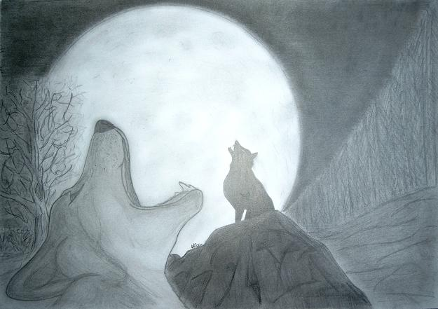 204 Loups Pleine Lune Aso Idark Dessin Et Portrait
